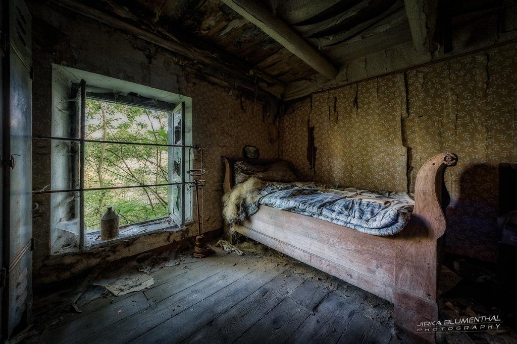 Cozy Home #5